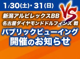 1/30(土)31(日) 新潟アルビレックスBB VS 名古屋ダイヤモンドドルフィンズ 戦 パブリックビューイング開催のお知らせ